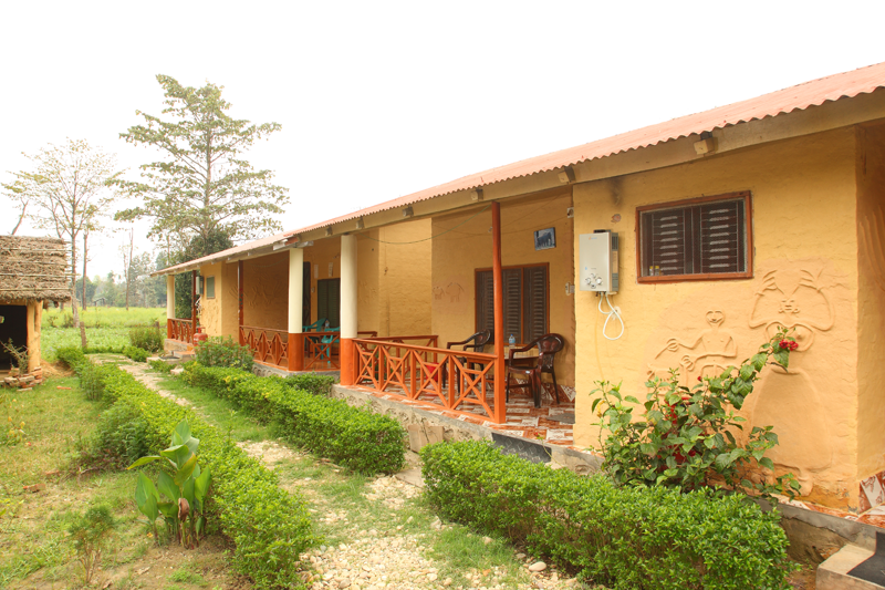 Forest Hideaway hotel and Cottage
