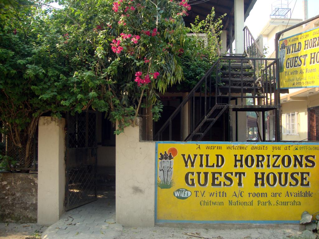Wild Horizons Guest House