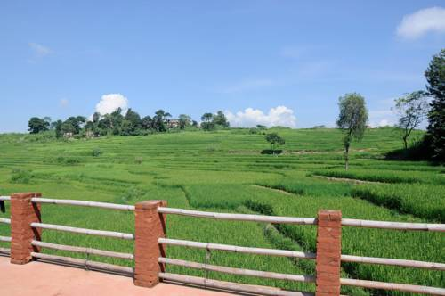 The Little House In The Rice Field