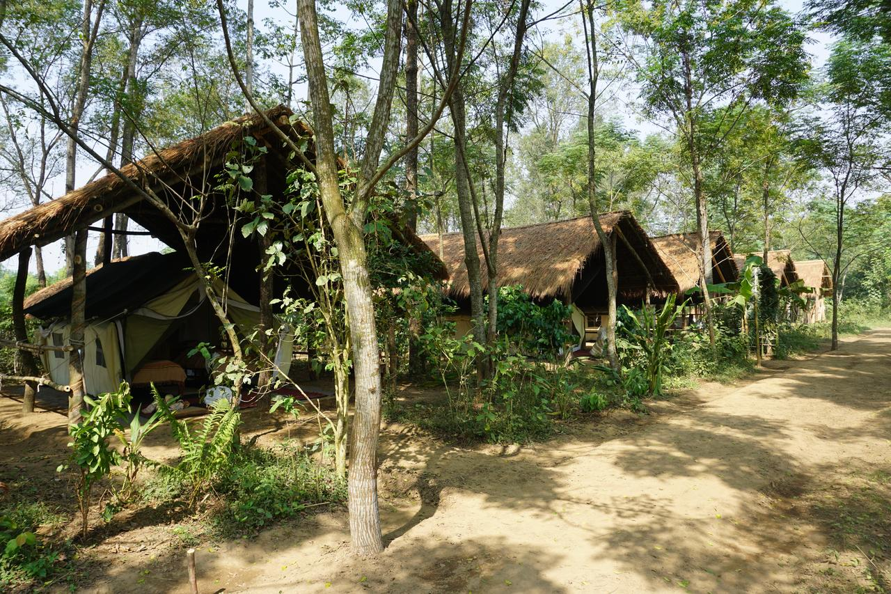 Tiger Top Tharu Lodge